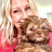 Terri's dog day care