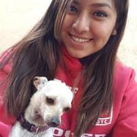 dog walker Karilou