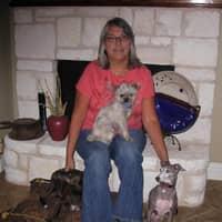 Sandy S.'s profile image