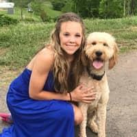 dog walker Alli
