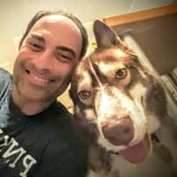 Kevin D.'s profile image