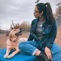 Marlene's dog day care