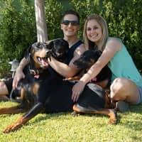 Francesca's dog day care