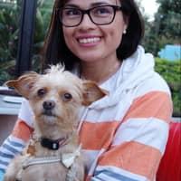 Aileen J.'s profile image