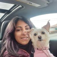dog walker Corina