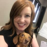 Jillayne's dog day care