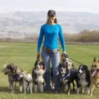 Angie S.'s profile image