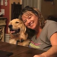 Kate & Joe's dog day care
