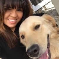 Mayra's dog boarding