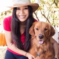 Meichen L.'s profile image