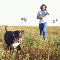 dog walker Justice