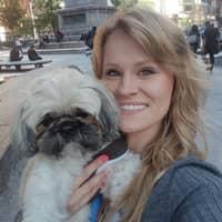 Jill & Sean's dog day care