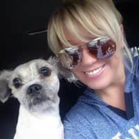 Misty's dog day care