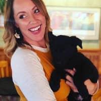 Jillian's dog day care