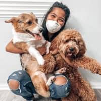 Lauren's dog day care