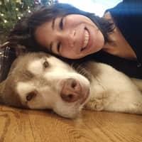 Katia's dog day care