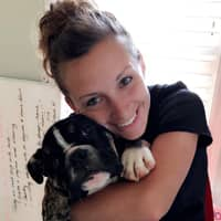 Julia's dog day care