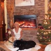 Carlene's dog day care