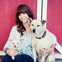 Nadia's dog day care