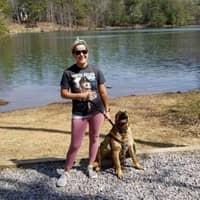 Mandy's dog day care