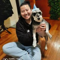 Yifan's dog day care