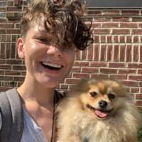 Lyndsey's dog boarding