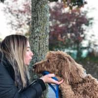 Fiona's dog day care