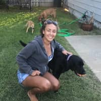 Isabelle & David's dog boarding