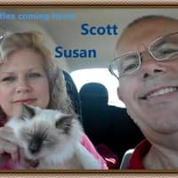 Susan & Marcus's dog day care