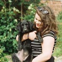 Jane's dog day care