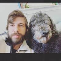 Zak's dog day care