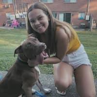 Kiely's dog day care