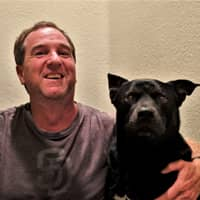 dog walker Travis