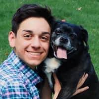 dog walker Dominick
