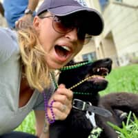 Petra's dog boarding