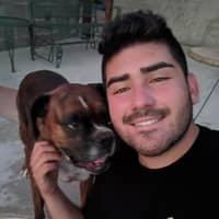Salvador's dog boarding