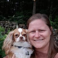 Tammy's dog boarding