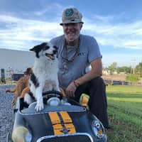 Woody's dog boarding