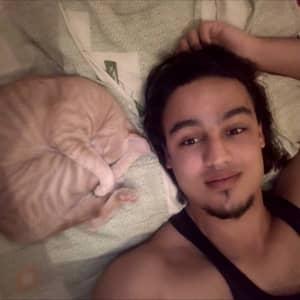 Mohammed A Z.