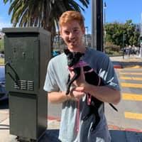 dog walker Chase