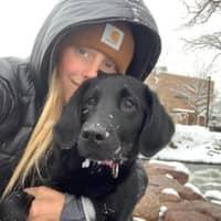 dog walker Arley