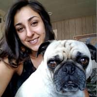 Shayda's dog boarding