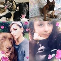 Madison & Charlea's dog boarding