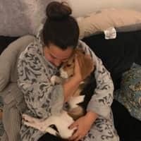 Hope-Anna's dog day care