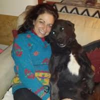 Deena's dog day care