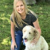 Laikyn & Garrett's dog boarding