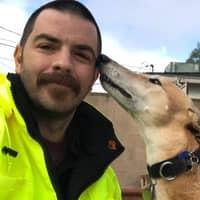 Everett's dog day care