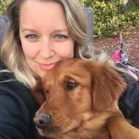Kaysha's dog day care
