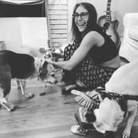 Jess's dog boarding
