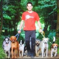 Alojamiento de perros de Aleix